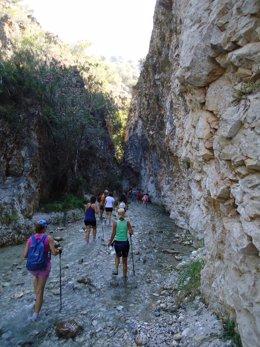 Imagen del río Chíllar
