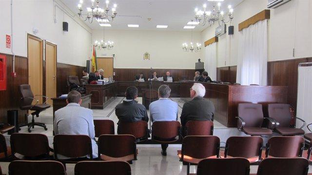 Juicio contra Juan Manuel Orta, Casto Pino y A.G.V