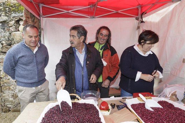 Miguel Ángel Revilla en la Feria de la Alubia de Casar de Periedo