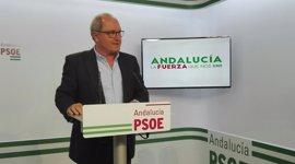 """PSOE-A felicita a Teresa Rodríguez y le pide que deje de ser """"comparsa del PP"""""""
