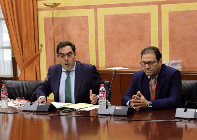 El presidente de ATA-A ,Rafael Amor, en comisión en el Parlamento andaluz