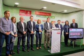 PSOE pedirá a De la Serna que explique las inversiones y plazos para el AVE a Almería