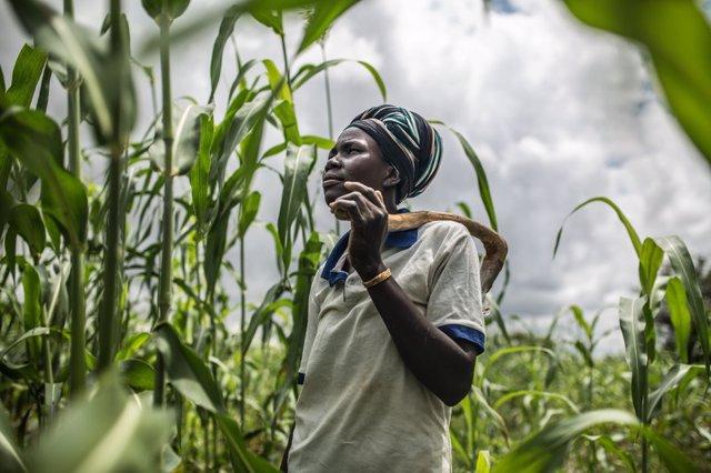 Fati Marmoussa en su campo de sorgo. En Burkina Faso