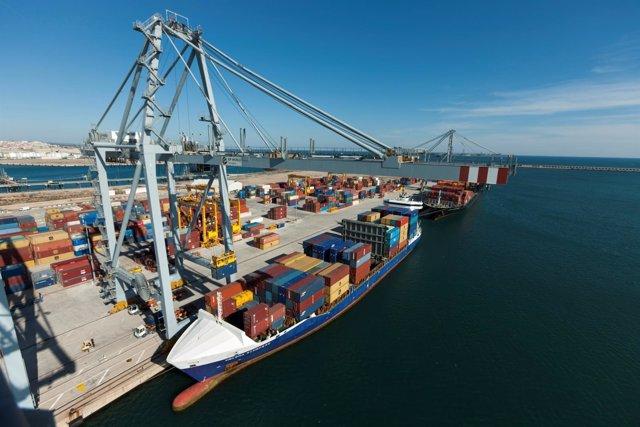 Semanalmente se exportan más de 300 contenedores