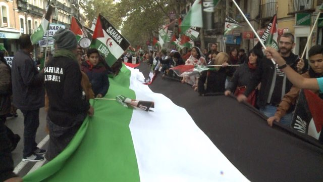 Miles de personas marchan por un 'Sahara Libre'
