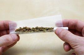 Investigan nuevos riesgos del consumo de marihuana