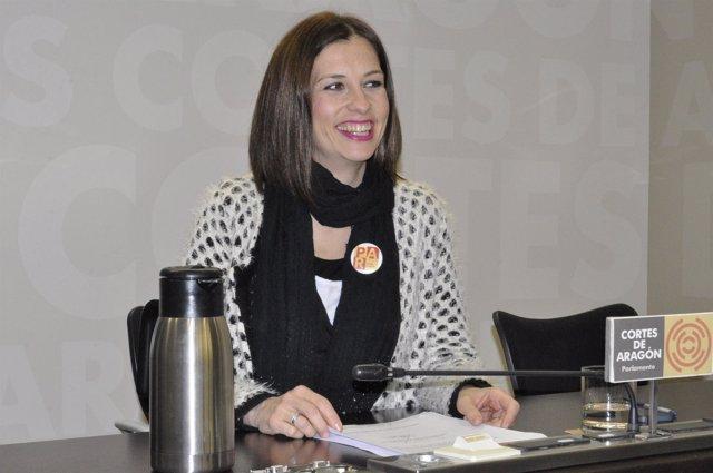 La diputada del PAR, María Herrero, en rueda de prensa en las Cortes