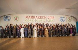 """WWF elogia la """"solidaridad"""" de los líderes en cambio climático y pide más ambición"""