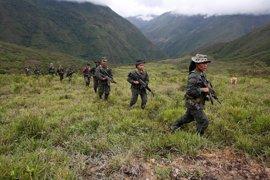 Mueren dos guerrilleros de las FARC abatidos por el Ejército a pesar de la tregua vigente