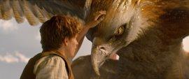 6 razones para no perderse Animales Fantásticos y Dónde Encontrarlos