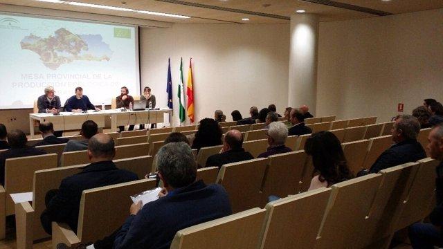 Constitución de la mesa de la agricultura ecológica de Granada