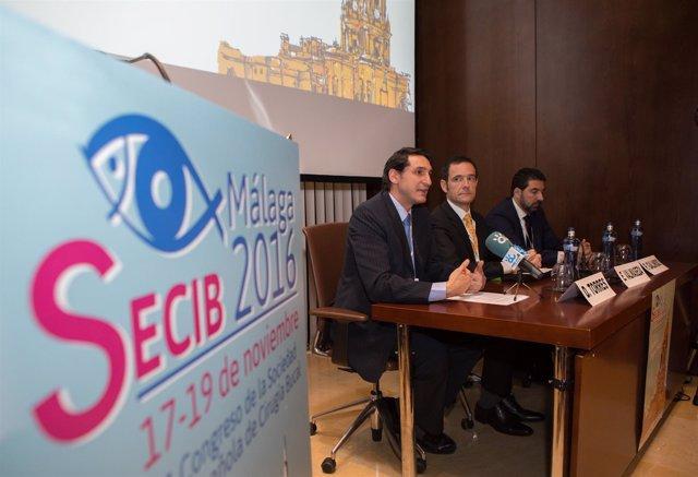 Congreso sociedad española de cirugía bucal