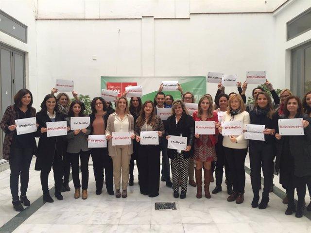 Consejo de la Mujer del PSOE de Sevilla.