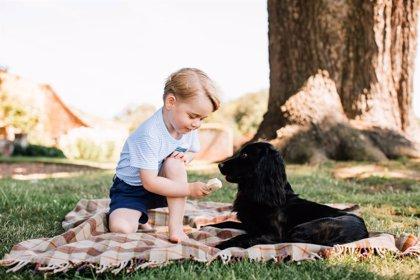 Las mascotas ayudan al proceso de madurez del niño