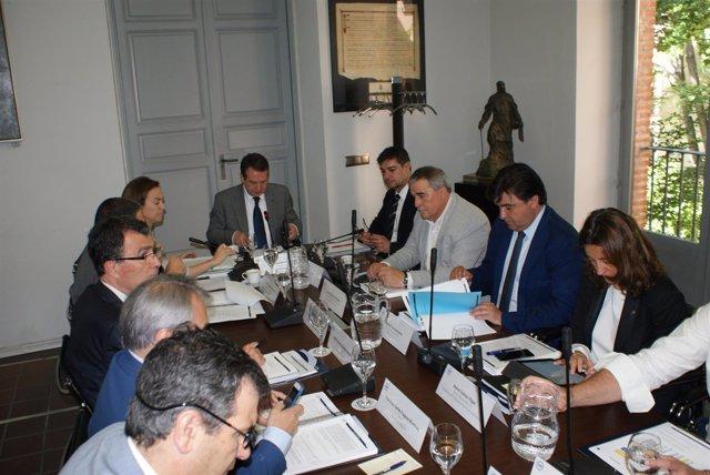 Junta de Gobierno de la FEMP presidida por Abel Caballero