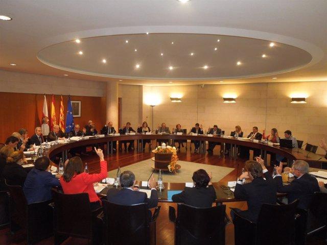 Pleno de la Diputación de Huesca.