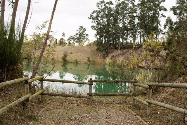 Np El Pozón De La Yesera Vuelve A Relucir Gracias A Fundación Naturaleza Y Hombr