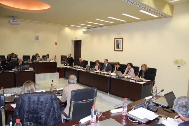 El consejo de gobierno de la UCO durante la sesión de noviembre