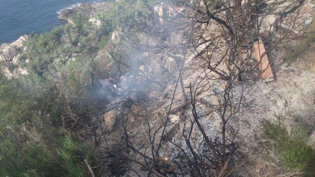 Incendio forestal en Torre de Portinatx (Ibiza)