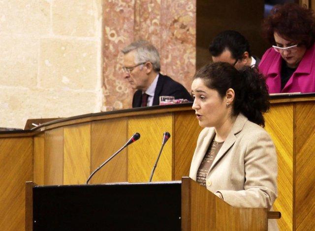 La parlamentaria andaluza de IU Inmaculada Nieto