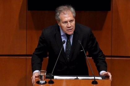 """El secretario de la OEA muestra sus condolencias por la muerte del """"líder histórico"""" Fidel Castro"""