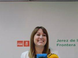 PSOE-A destaca que la Ley andaluza para personas con discapacidad avanza en la inclusión