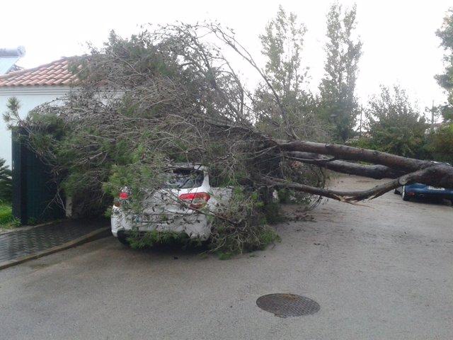 Incidencia por lluvias en Cádiz
