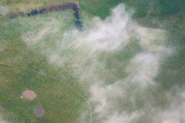 Mueren seis personas en Australia por 'asma de las tormentas eléctricas'