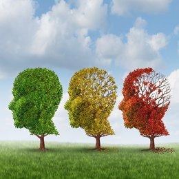 Memoria, alzheimer, mayores