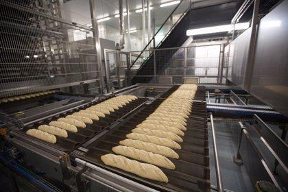 Berlys invierte 22 millones en su planta de Noblejas (Toledo)