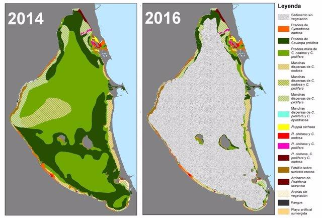 Mapa del antes y el después de la distribución de las praderas marinas