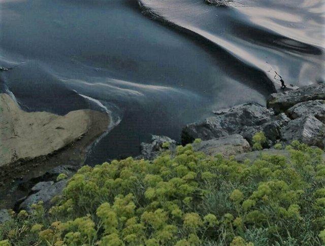 Vertido de crudo en playa del Rinconcillo en Algeciras