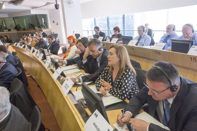Intervención en Bruselas de la consejera de Presidencia Begoña Martínez Arregui