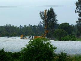 Junta remite al Plan de Corona Norte Forestal de Doñana como marco contra balsas ilegales