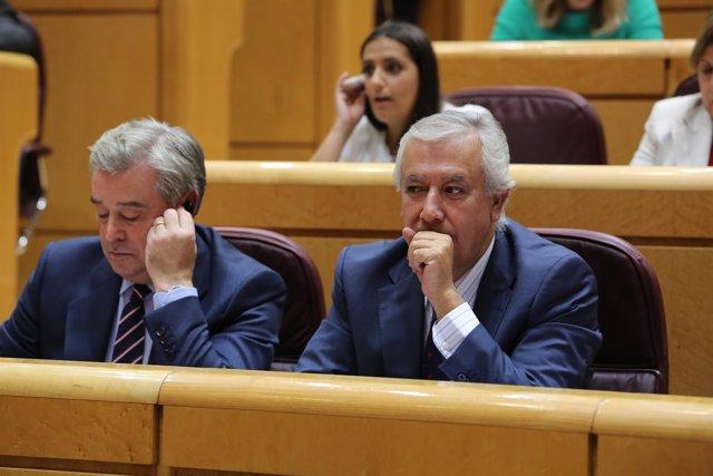 Javier Arenas en el Senado
