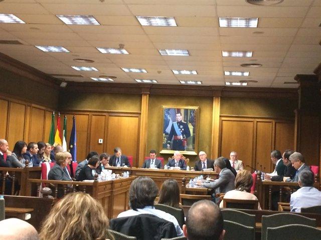 El pleno de la Diputación aprueba por unanimidad el rescate de Galasa.