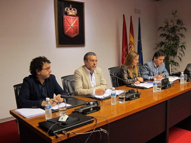 Miguel Laparra en una comisión parlamentaria
