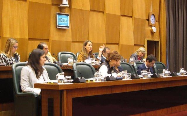 PP y C'S en el pleno del Ayuntamiento