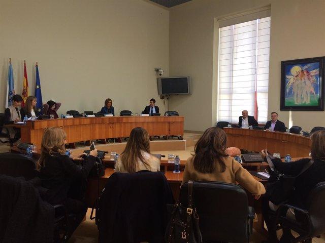 Comisión de Economía del Parlamento de Galicia.