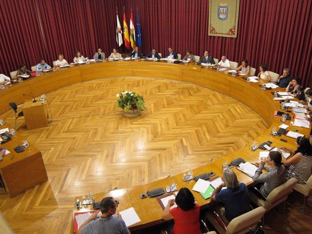 Sesión de pleno del Ayuntamiento de Logroño