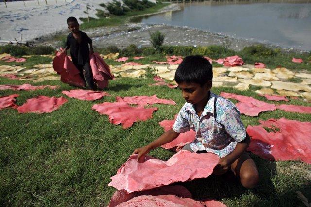 Varios niños recogen cuero seco en Daca.