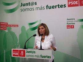 PSOE insta a Teresa Rodríguez a analizar su propia actuación en el Parlamento antes de criticar al PSOE en Cádiz