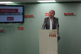 El PSOE pide que el presupuesto de Diputación de 2017 incluya un plan de empleo