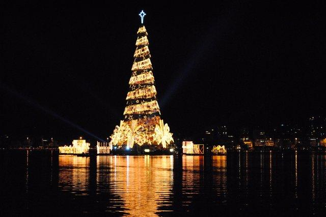 árbol De Navidad De La Laguna