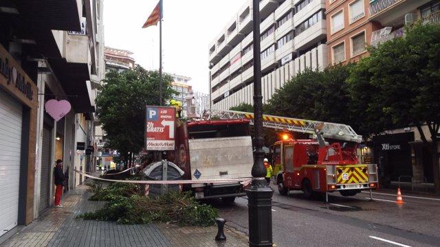 Arbol caído en la calle Colón de Valencia