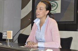Susín (PP) presentará enmiendas al Presupuesto de 2017 por 50 millones para gastos de personal sanitario