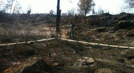 Condenado a 10 años de cárcel un guardia civil por 20 incendios en la sierra del suroeste