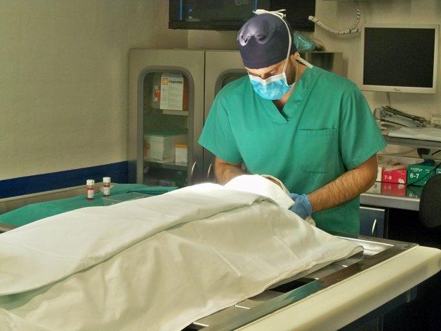 Simulación de una extracción de córnea en el Instituto de Medicina Legal