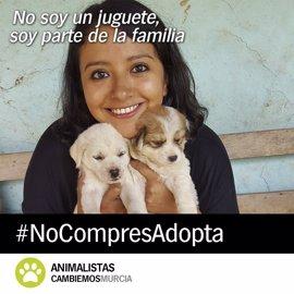 Cambiemos Murcia lanza la campaña 'No soy un juguete' para fomentar la adopción de animales