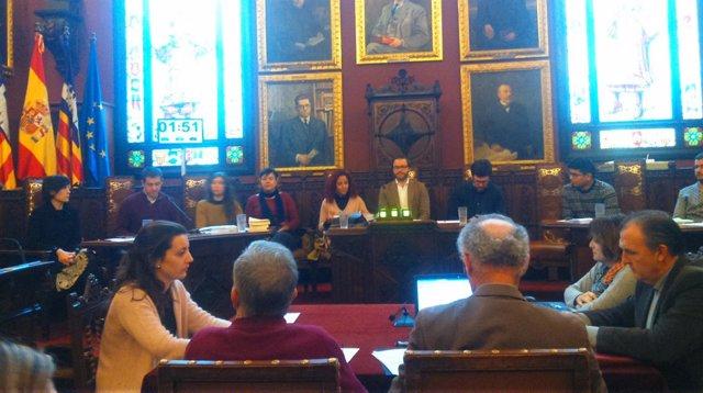 Pleno del Ayuntamiento de Palma